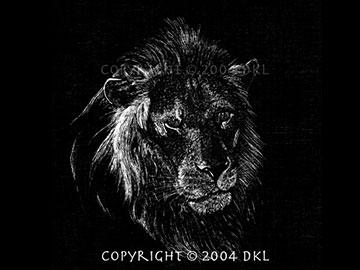 Scratchboard Lion - Thumbnail